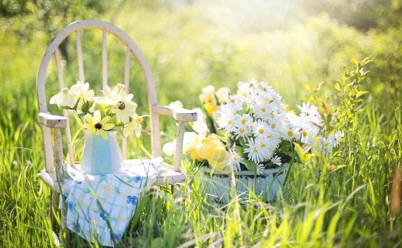 Aménagez votre jardin pour cet été!